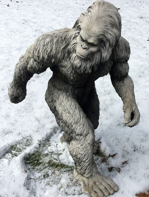 Bigfoot or Yeti